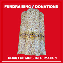 fundraising and donations page link