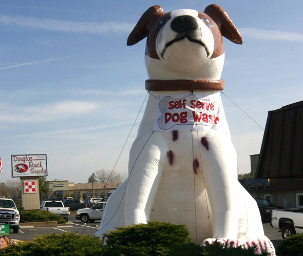 photo of inflatable dog