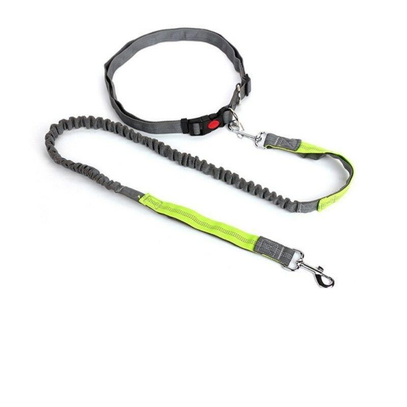 Elastic Breakaway Hand Free Waist leash - Love Pawz