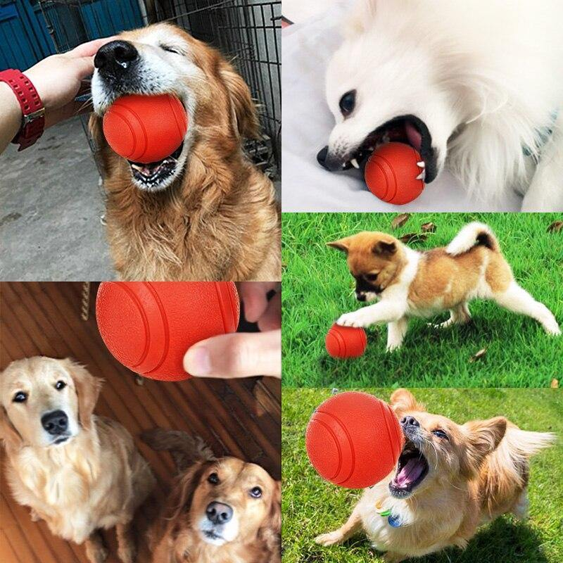 Bite-resistant Rubber Ball - Love Pawz