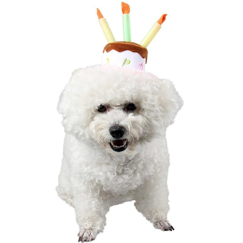 Dog Birthday Candle Hats - Love Pawz