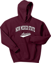 Load image into Gallery viewer, New Mexico STATE Pullover Hooded Sweatshirt