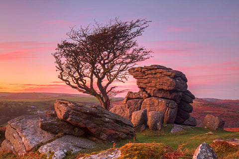 Dartmoor national park howell lawn during sunset
