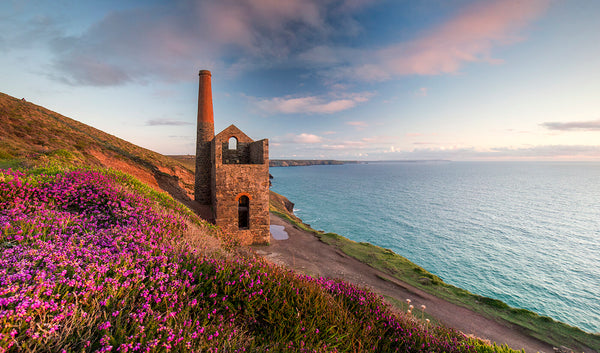 Towanroath mineshaft during spring with the stunning wild flowers and heather framed among the cornish sea and coast