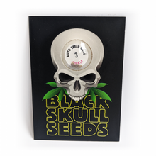 Load image into Gallery viewer, Auto SkullRyder - Autoflowering