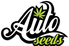 Load image into Gallery viewer, Pounder - Auto Feminised Seeds  (Previously Auto Pounder with Cheese)