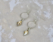 Load image into Gallery viewer, Berlynne Ring Drop Earrings - Golden Shadow