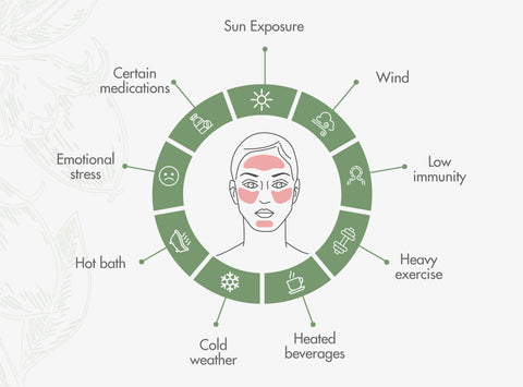 Rosacea-causes-infographic
