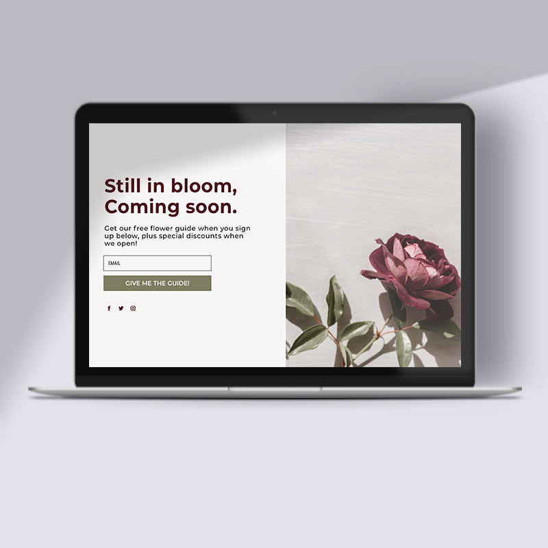 Bloom – Coming Soon Page DIVI Layout