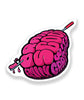 The Brain Scoop Vinyl Decal