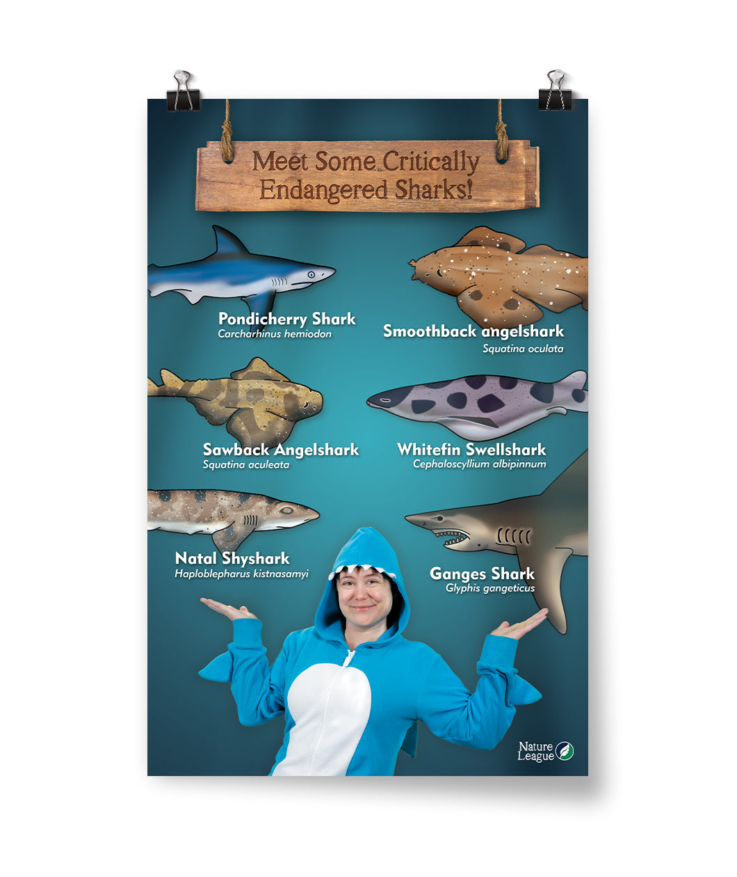 Critically Endangered Sharks Poster