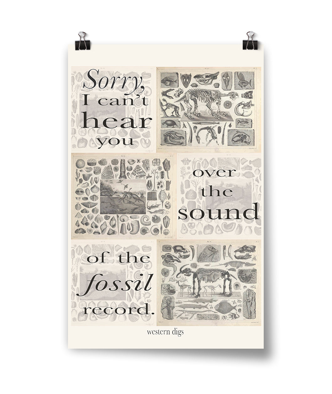 Fossil Record Poster