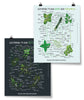 Herbs Poster Bundle