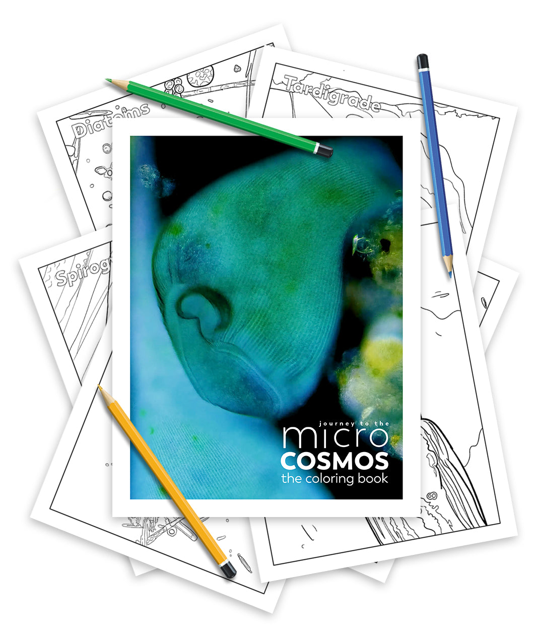 Journey To The Microcosmos Coloring Book - Digital Version