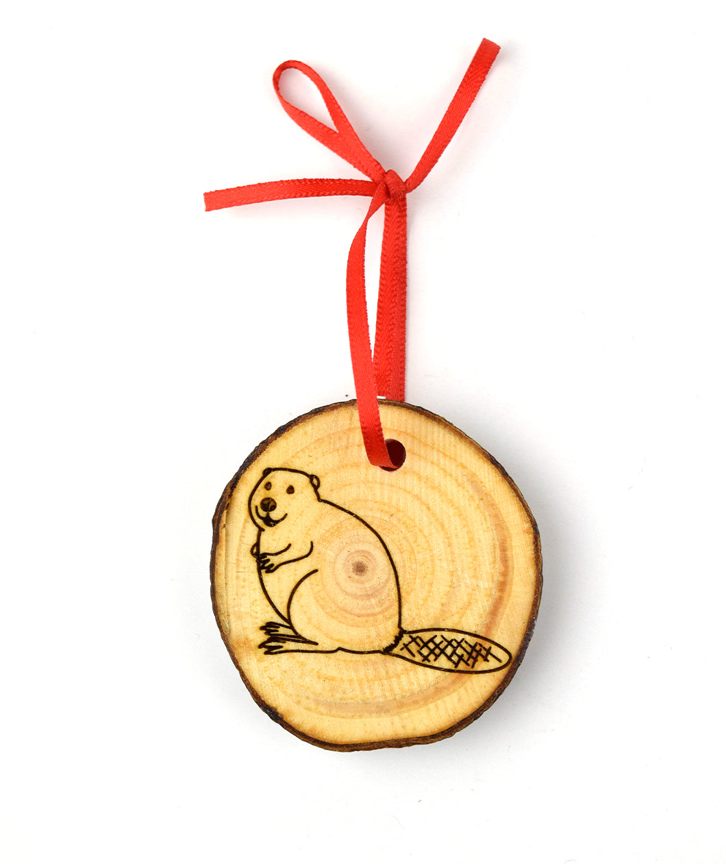 Animal Wonders Wooden Ornament