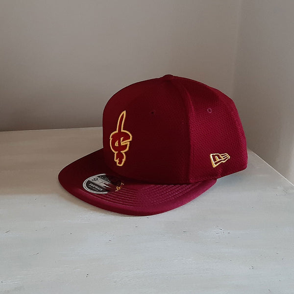 Cleveland Cavaliers NBA 9FIFTY Snapback Hat - size small/medium