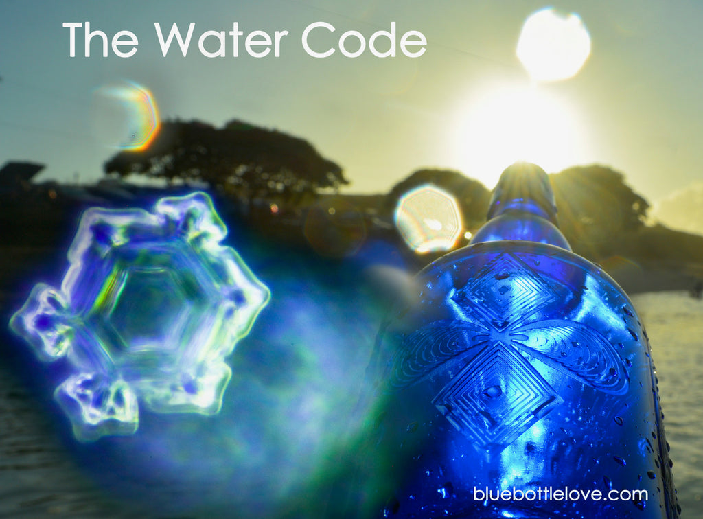 the-water-code
