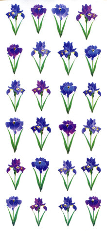JF571 WASHI STICKERS  IRISES 4