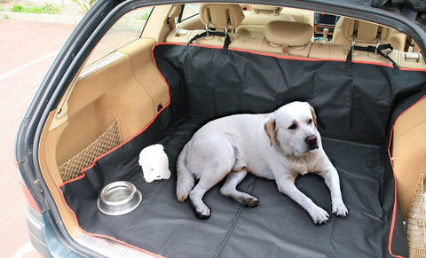 2 in 1 Car Boot Seat Protector