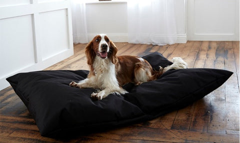 Washable Water Resistant Pet Bed With Deep-Fill Cushion