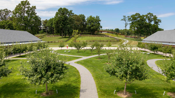 Grace Farms Welcome Plaza