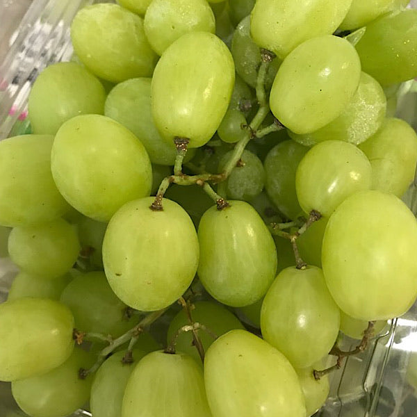 Green Seedless Grapes 500g 씨없는 그린포도