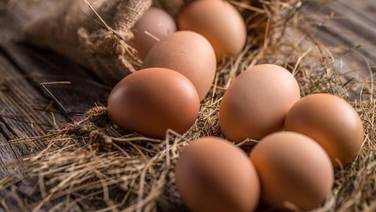Brown eggs resting on straw