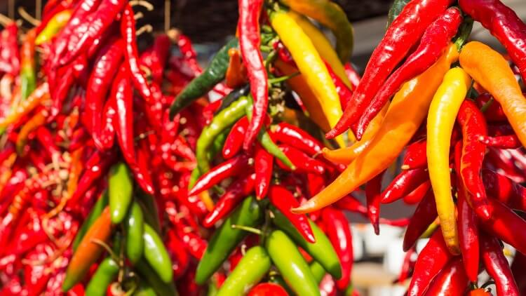 Chilli peppers hanging at market