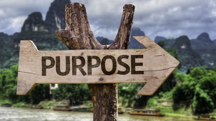 Wooden sign in forest saying purpose