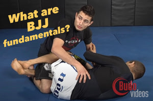 The Quest to Define BJJ Fundamentals by Budo Jake
