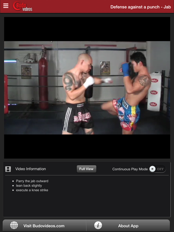 The Muay Thai Clinch - ipad chapter action image