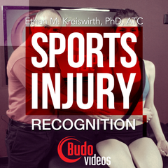 Sports Injury Recognition by Ethan M. Kreiswirth, PhD, ATC - main store product image