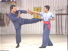 Wing Chun Fundamentals DVD by Augustine Fong 2
