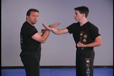 Ron Balicki's Jun Fan Jeet Kune Do Instructor Series  8 DVD Set 4