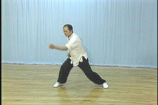White Crane Hard & Soft Qigong DVD with Dr. Yang, Jwing-Ming - Budovideos