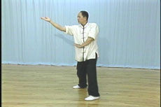 White Crane Hard & Soft Qigong DVD with Dr. Yang, Jwing-Ming 5