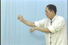 White Crane Hard & Soft Qigong DVD with Dr. Yang, Jwing-Ming 4