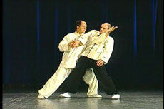 Taijiquan Classical Yang Style DVD with Dr. Yang, Jwing-Ming 4