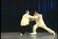 Taijiquan Classical Yang Style DVD with Dr. Yang, Jwing-Ming 1