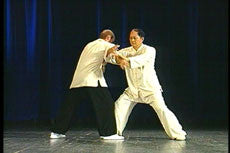 Taijiquan Classical Yang Style DVD with Dr. Yang, Jwing-Ming 3
