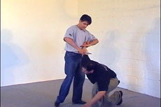 Systema: Fundamentals of Knife Disarming DVD 4