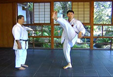 Encyclopedia of Goju Ryu Part 1 DVD with Morio Higaonna 2