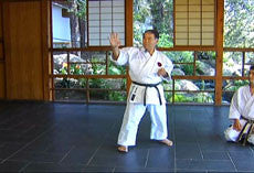 Encyclopedia of Goju Ryu Part 1 DVD with Morio Higaonna 3