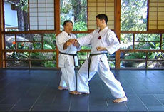 Encyclopedia of Goju Ryu Part 1 DVD with Morio Higaonna 4