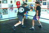 Ultimate Boxing 8 DVD Set with Chris Getz - Budovideos