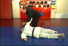 Hapkido Ultimate Self Defense DVD Set with Steve Sexton 1