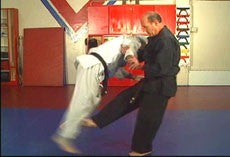 Hapkido Ultimate Self Defense DVD Set with Steve Sexton 3