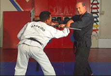 Hapkido Ultimate Self Defense DVD Set with Steve Sexton 2