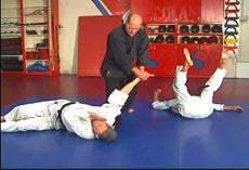 Hapkido Ultimate Self Defense DVD Set with Steve Sexton - Budovideos