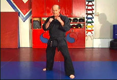 Hapkido Ultimate Self Defense DVD Set with Steve Sexton 5